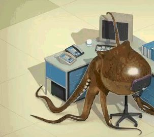 Working Octopus
